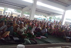 Women folks turn up in strength to attend a demonstration session on Filling-up of Application Form under Dudhnoi Circle in Goalpara on 16th June, 2015.